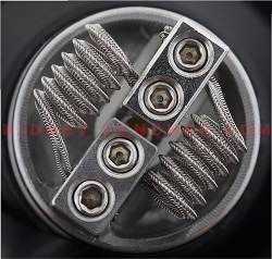 Kidney Puncher N80 Mohawk Alien 28/36 .2ohms 3mm 6-Wrap Pair